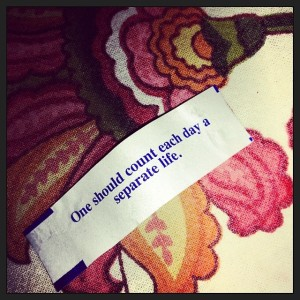 We stayed true to our tradition this year of ordering Chinese from the little place my husband and I had New Year's Eve dinner 6 years ago when he arrived here from across the country.  My fortune tonight was perfect.  Each day we are blessed with the chance to start anew.